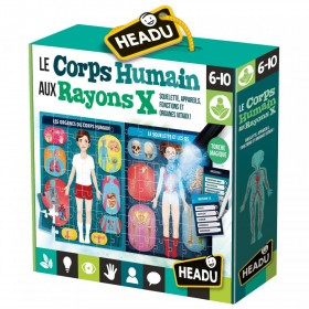 CORPS HUMAIN AUX RAYONS X
